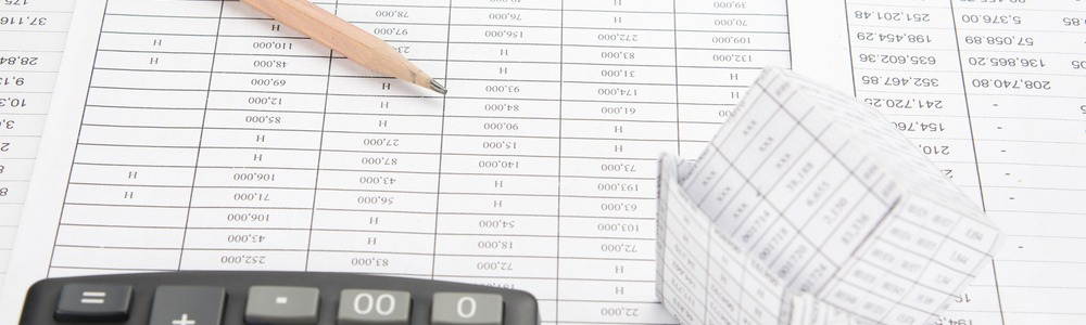 Numbers on a spreadsheet to calculate bankruptcy information.