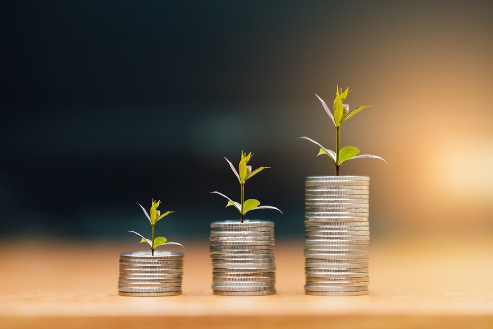Small Business Investing
